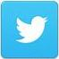 icona_twitter.JPG