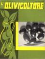 L'olivicoltore rivista olearia italiana anno XV giugno 1937