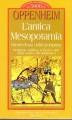L'antica Mesopotamia ritratto di una civiltà scomparsa religione politica scienza e arte degli Assiri e dei Babilonesi